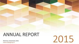 Annual report for 2015